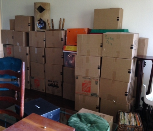 Once We Got Into the New Apartment, the Stack of Boxes 3 Deep Once Again Overwhelmed Me