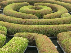 Book marketing feels like a confusing labyrinth and many authors don't even want to go there