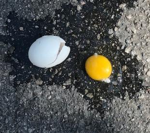 egg on pavement-IMG_0567